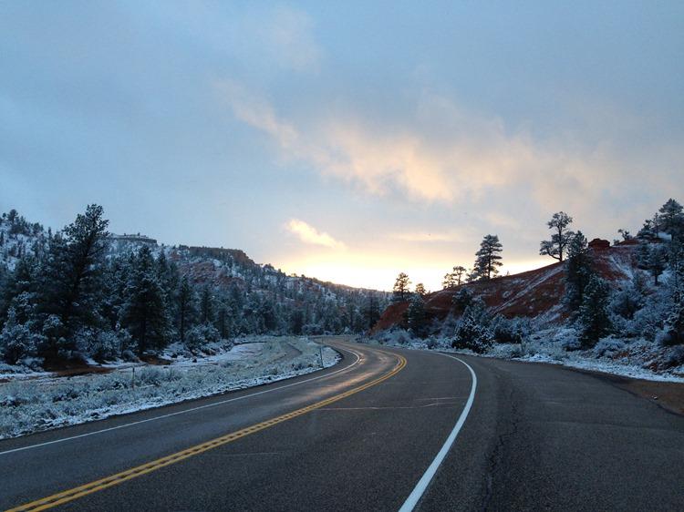 Bryce Canyon National Park, Utah   A Life Exotic