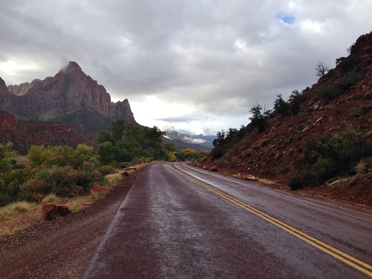 Zion National Park, Utah | A Life Exotic
