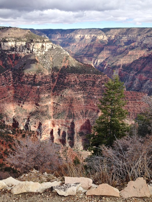 North Rim, Grand Canyon National Park, Arizona | A Life Exotic