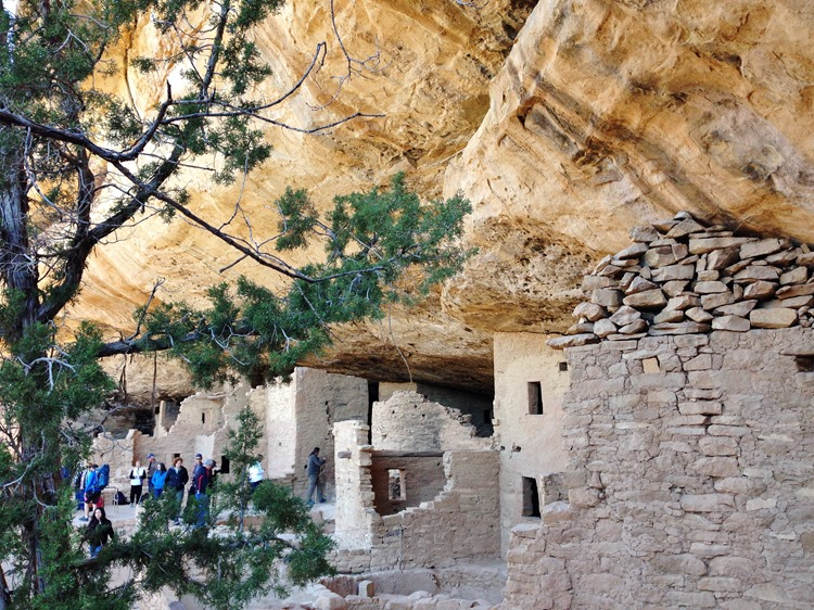 Mesa Verde National Park, Colorado | A Life Exotic